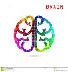 Resultado de imagem para left brain right brain