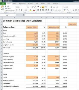 This Common Size Balance Sheet Calculator Produces A Common Size