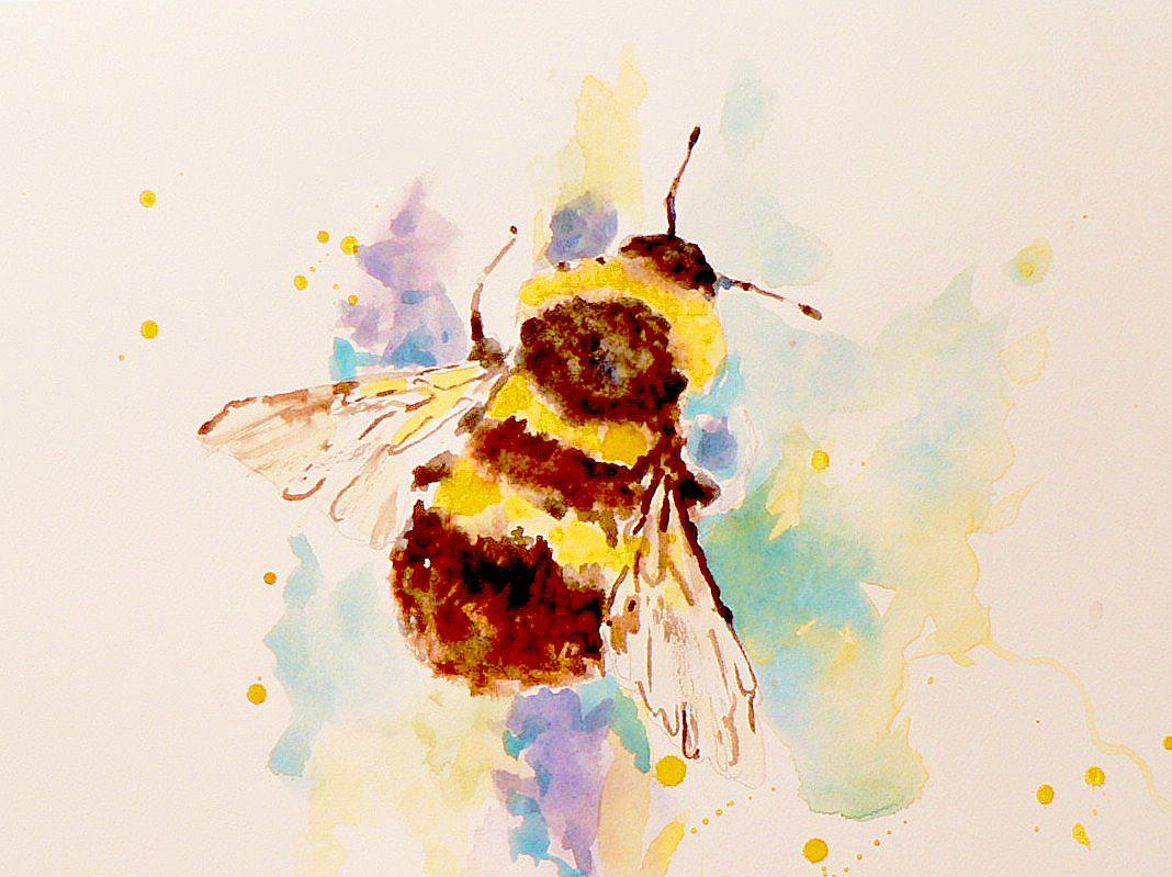 A Little Watercolour Bee
