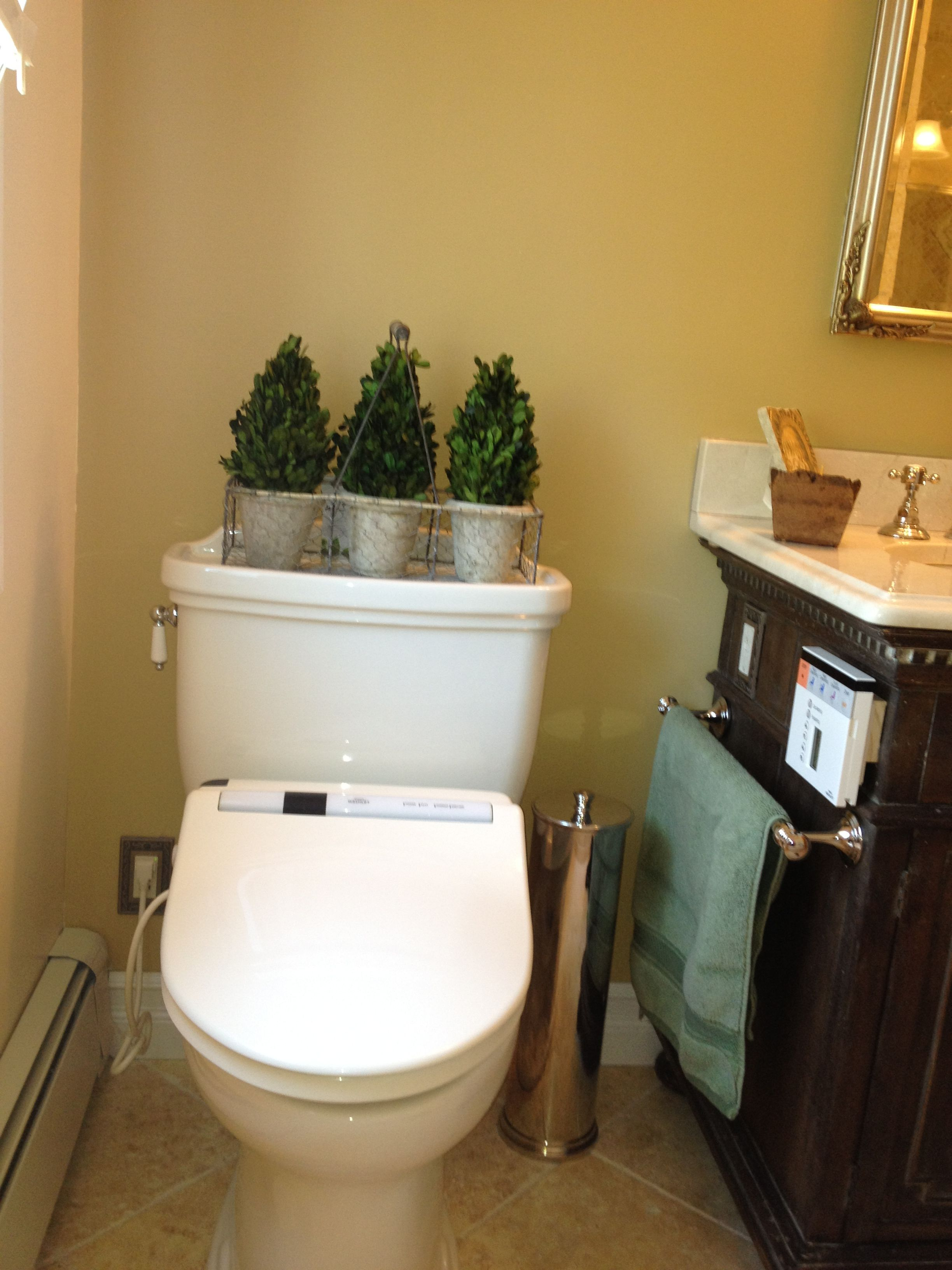 My new favorite thing - Toto toilet and S300 washlet; Restoration ...