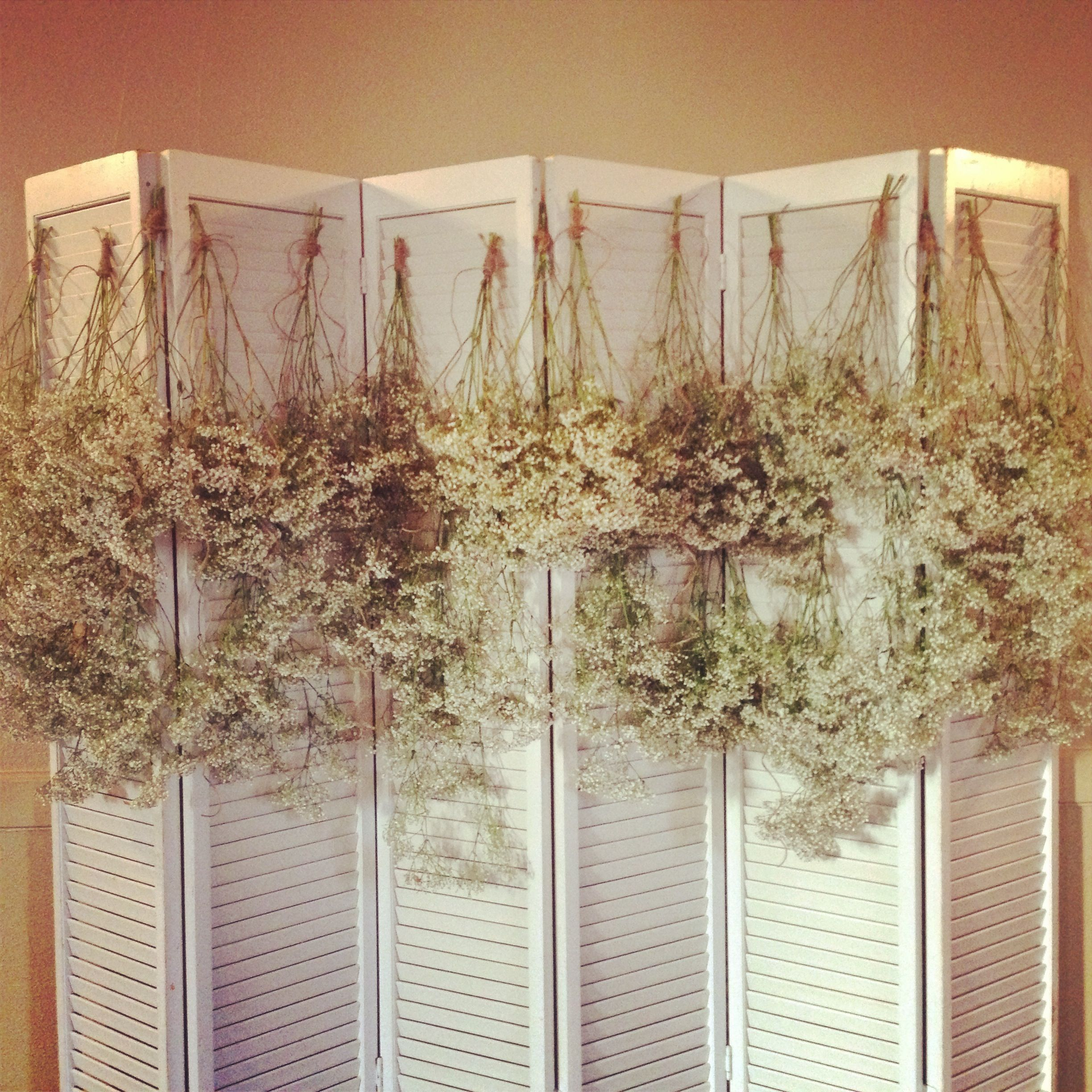babys breathe and hemp rope used to create a wedding backdrop