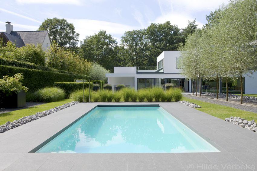 Buitenzwembad in minimalistische tuin starline zwembad for Buitenzwembad aanleggen
