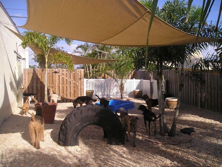 Backyard Play Ideas For Dogs Google Search Dog Run