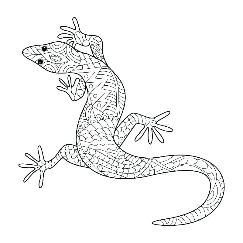 Gecko Coloring Pages Best Coloring Pages For Kids Coloring Books Animal Coloring Pages Coloring Pages