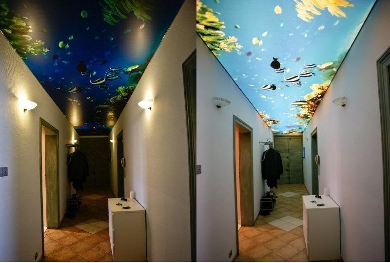 Falso techo decorativo techos tensados stretch ceilings - Falso techo decorativo ...