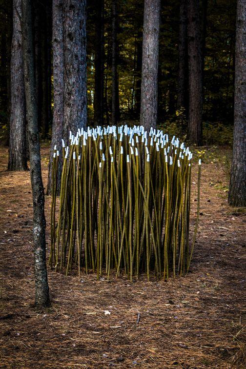 Marvelous Land Art by Pierre Arnoldi - 12