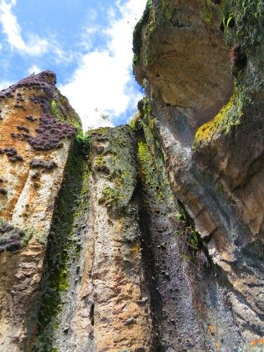 Bosque de Piedra #cumbemayo #cajamarca #peru