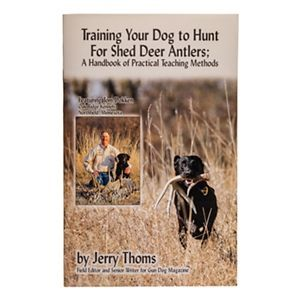 Training Your Dog To Hunt For Shed Deer Antlers By Jerry Thoms
