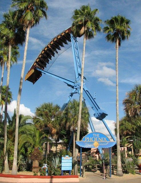 3ba19b2ff7ab85fbf12259ecdc431eff - Hyatt Near Busch Gardens Tampa Fl