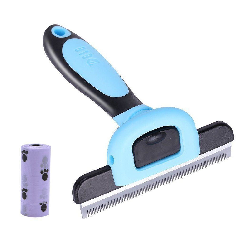 a lola giveaway the tips pitty sheds dog brush shedding com dogs to lolathepitty how in reduce