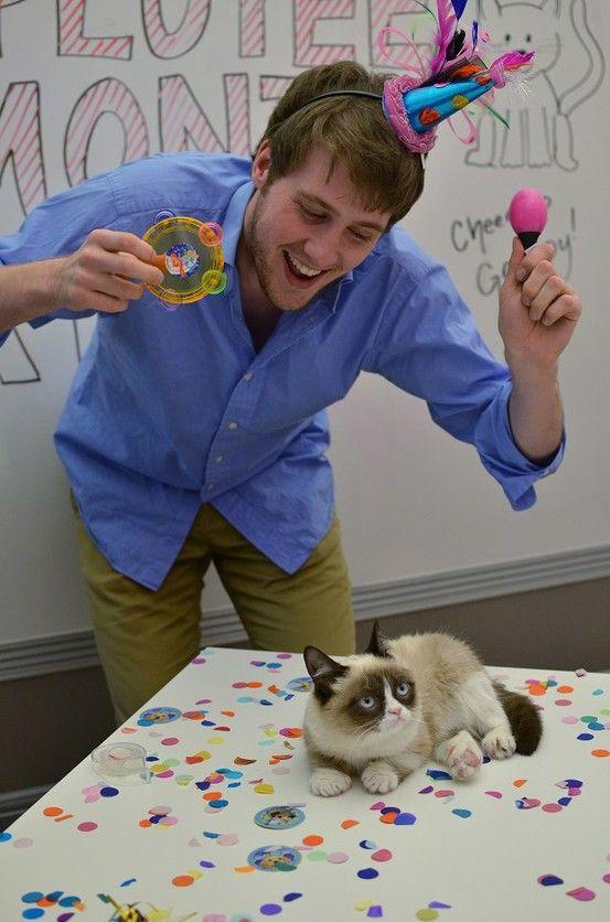 Tard the Grumpy Cat visits BuzzFeed