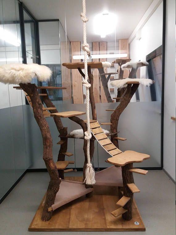 Unsere hochwertigen, begehbaren Kratzbaumanlagen erstellen wir in verschiedenen Größen! So ein Königreich kann sowohl von jungen Katzen als auch von älteren Katzen oder Katzen mit gesundheitlichen Einschränkungen bespielt und genutzt werden. Auch im hohen Alter ist eine Katze nun in der #kittycats