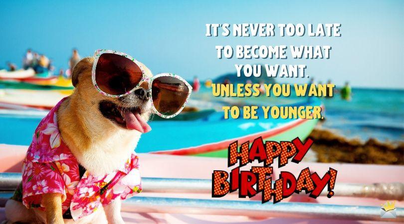 Funny Happy Birthday Images Funny happy birthday images
