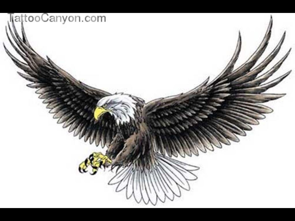 Open Large Wings Eagle Tattoo Design | wings | Pinterest | Eagle ...