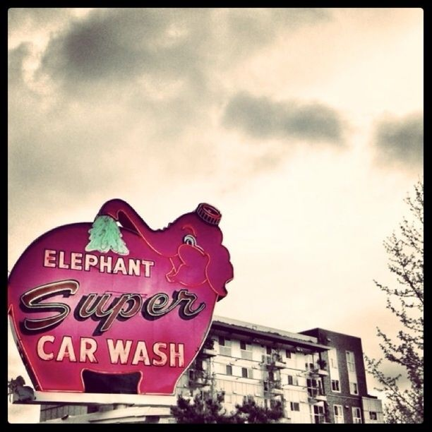 """Discovered by: BP """"The Pink Elephant Car Wash,"""" Seattle, WA."""
