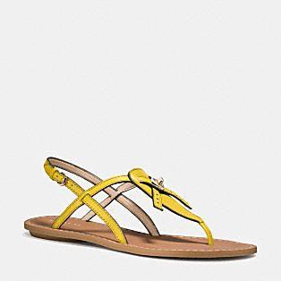 COACH Designer Sandals | Camara Sandal