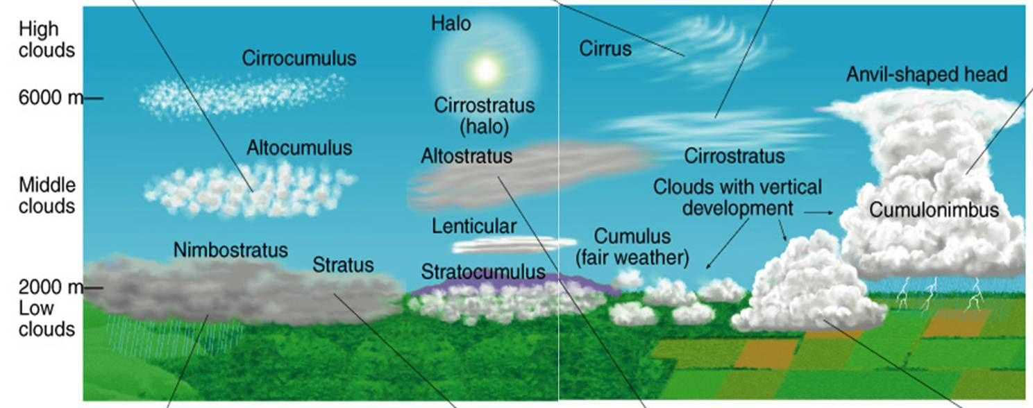 small resolution of Images For \u003e Types Of Clouds Diagram   Cloud diagram