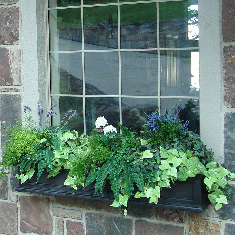 Amazon Com Mayne Fairfield 5822b Window Box Planter 3 Foot Black Plant Window Boxes Patio Lawn Window Planter Boxes Window Planters Window Box Flowers