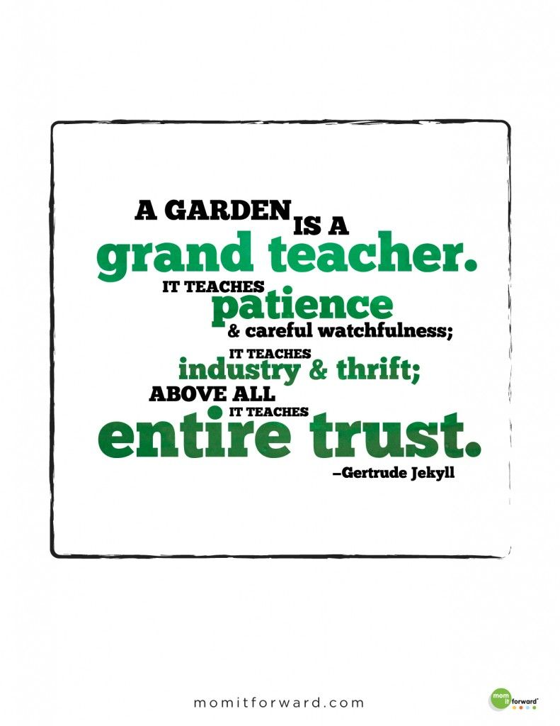 Gardening Quote Mom It Forward Garden Quotes Vegetables Quote Classroom Quotes