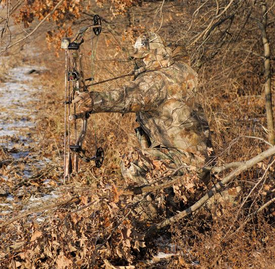 Dos and Donts: Crossbow Hunting #bowsandcrossbows