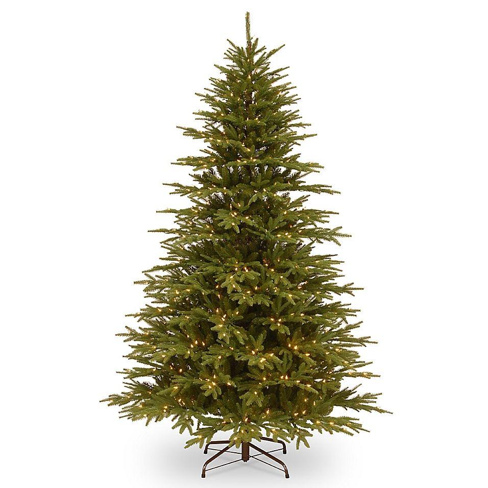 National Tree Company 7 1 2 Pre Lit Monterey Fir Artificial Christmas Tree Green Fir Christmas Tree Christmas Tree Clear Lights Pre Lit Christmas Tree