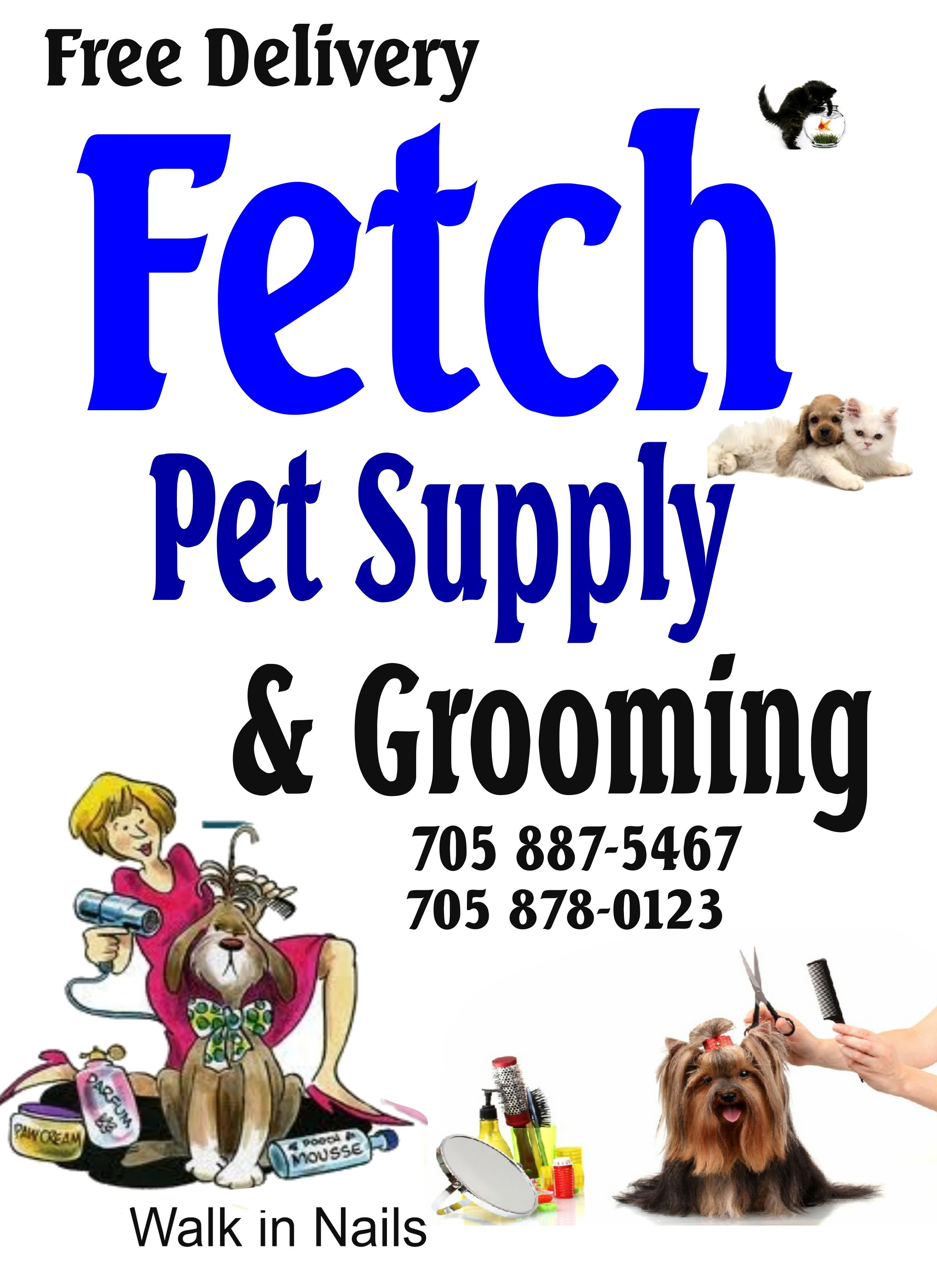 Book Your Grooming Today Dog With Images Pet Supplies Food