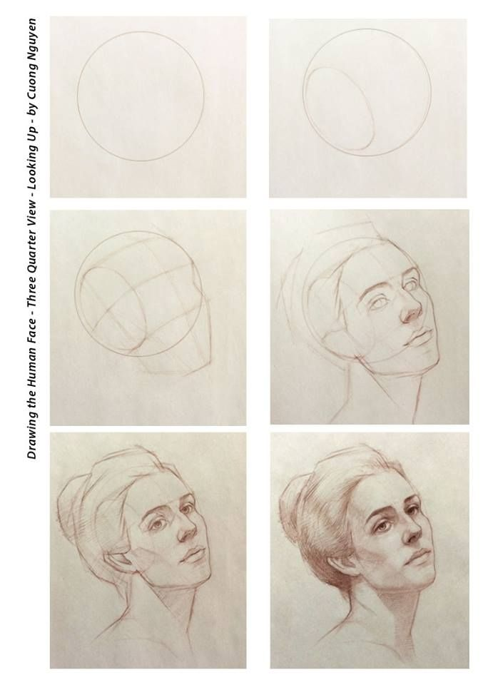 Drawing The Human Face Three Quarter View Looking Up By Cuong Nguyen Cool Drawings Portrait Drawing Drawings