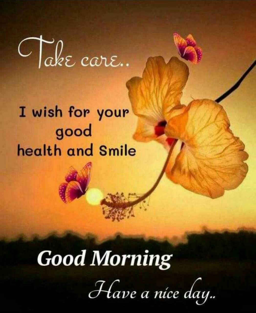 English Good Morning Wishes Good Morning Wishes Good Morning Love Messages Good Morning
