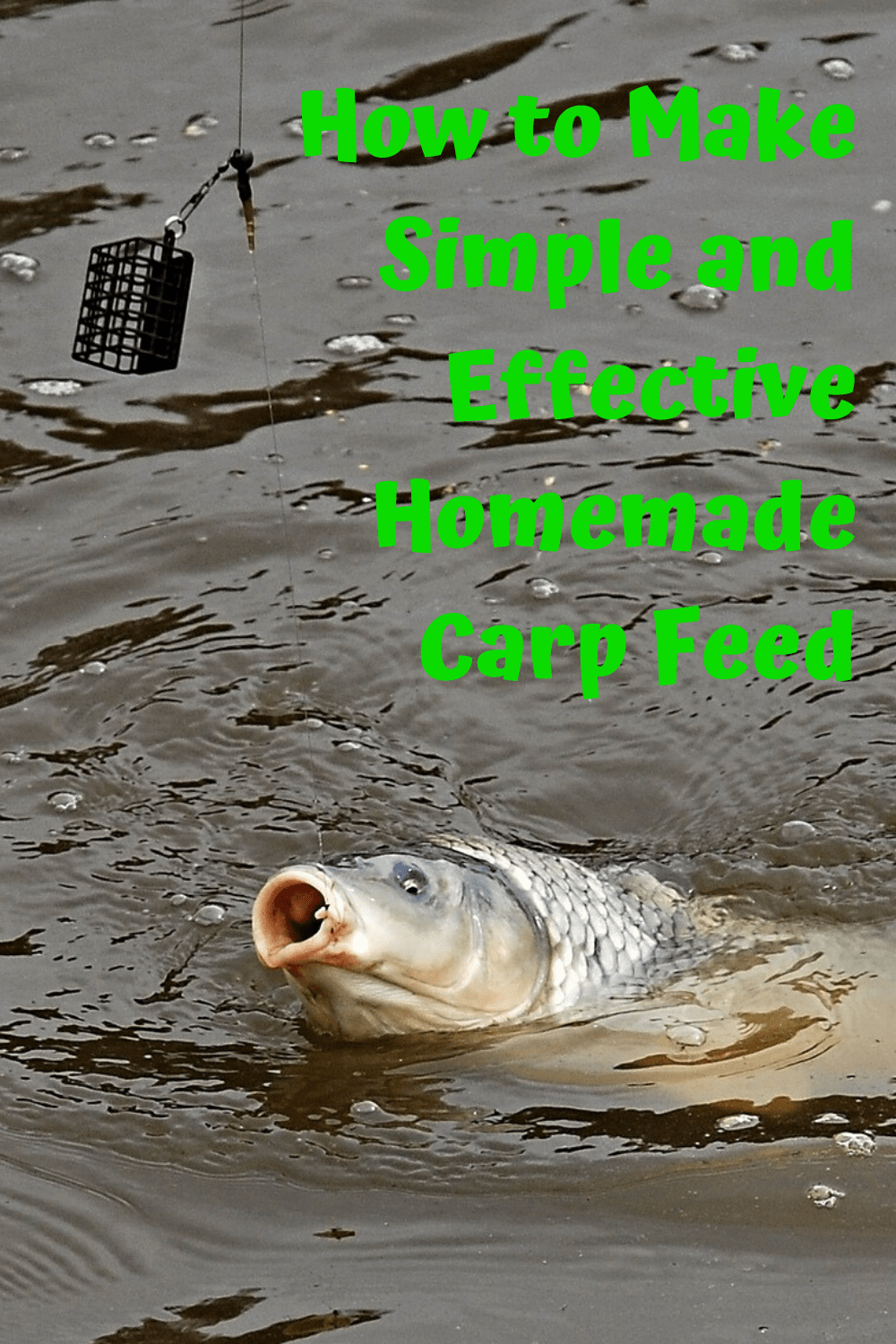 If you want to CATCH BIG CARP, EFFECTIVE CARP FEED IS NECESSARRY. Unfortunately, carp feed is EXTREMELY EXPENSIVE. That's why MAKING IT ON YOUR OWN is THE BEST WAY to CATCH BIG CARP, but still have SOME MONEY LEFT. Therefore, since the CARP FEED RECIPE I USE WORKS VERY WELL, I'm gonna show you HOW TO MAKE SIMPLE AND EFFECTIVE HOMEMADE CARP FEED in this article!