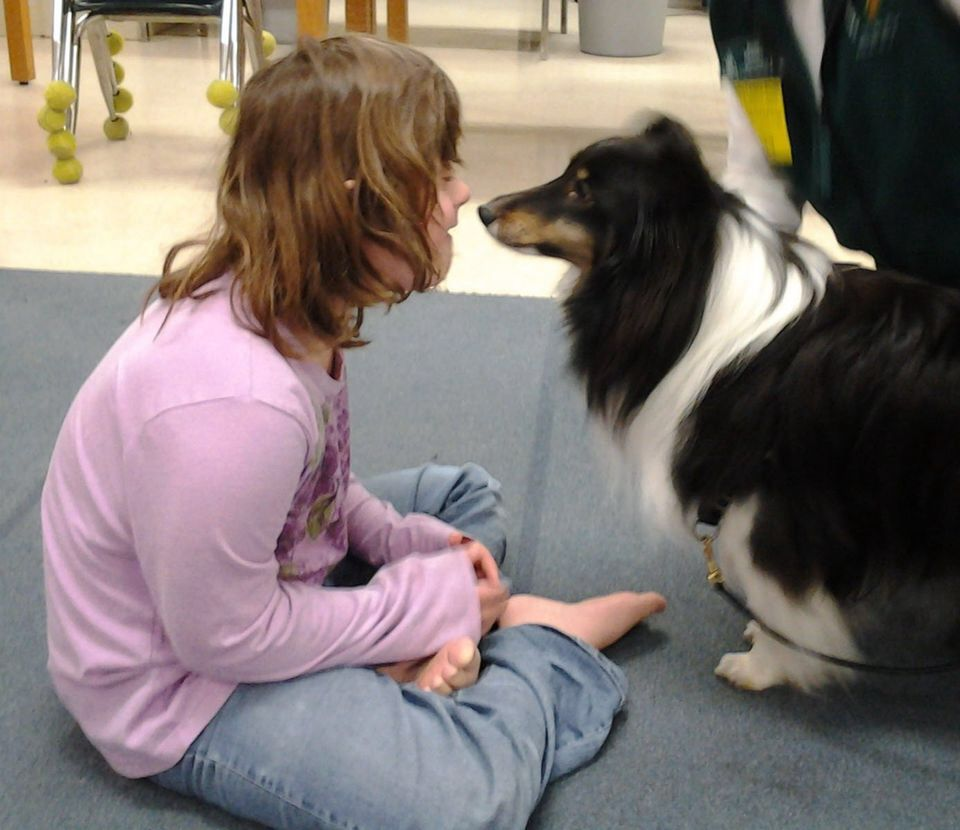 Diverting Rapy Dog Visits Child Syndrome Sheltie Love Down Syndrome Dog Shih Tzu Down Syndrome Dog Pug Syndrome Rapy Dog Visits Child bark post Down Syndrome Dog