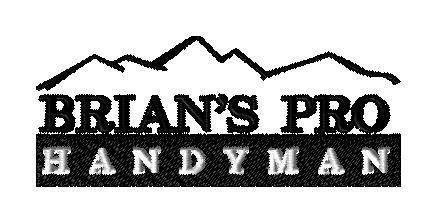 BriansPro Logo - custom design for T - custom embroidery