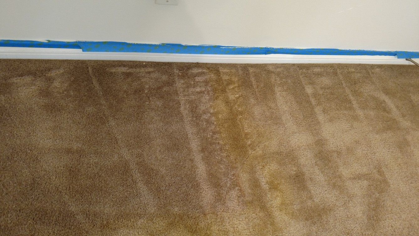 This Is Damage To The Carpet From Home Cleaning Unit Or A Rental Carpet Cleaner Call Us Next Time For A Cleani Cleaning Upholstery Clean House Carpet Cleaners