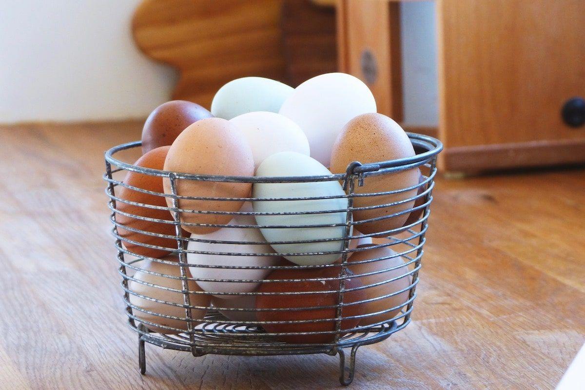 Eier Aufbewahren