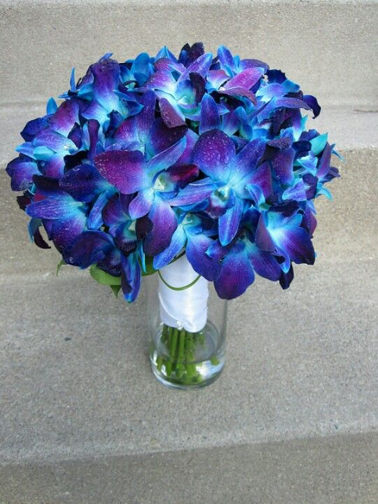 My Main Wedding Flower Blue Orchids Thinking About Doing White Purple