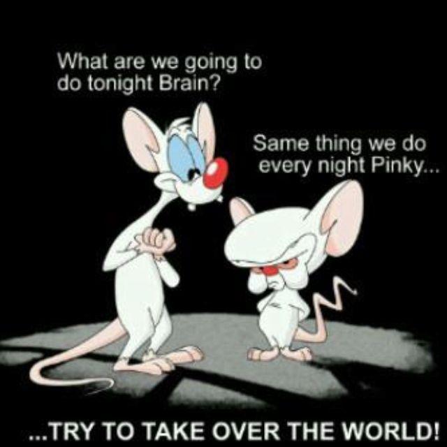 Weltherrschaft Pinky Brain