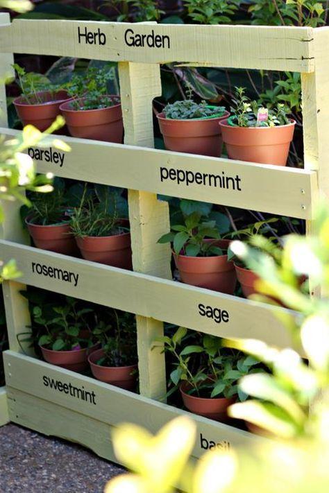 5 fa ons de cr er un jardin de fines herbes chez soi - Comment faire un jardin vertical ...