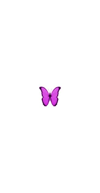 ylfrettub elprup in 2020 | Purple butterfly wallpaper ...