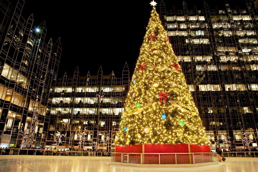Christmas Tree Home Design Awesome - Architecture and Furniture