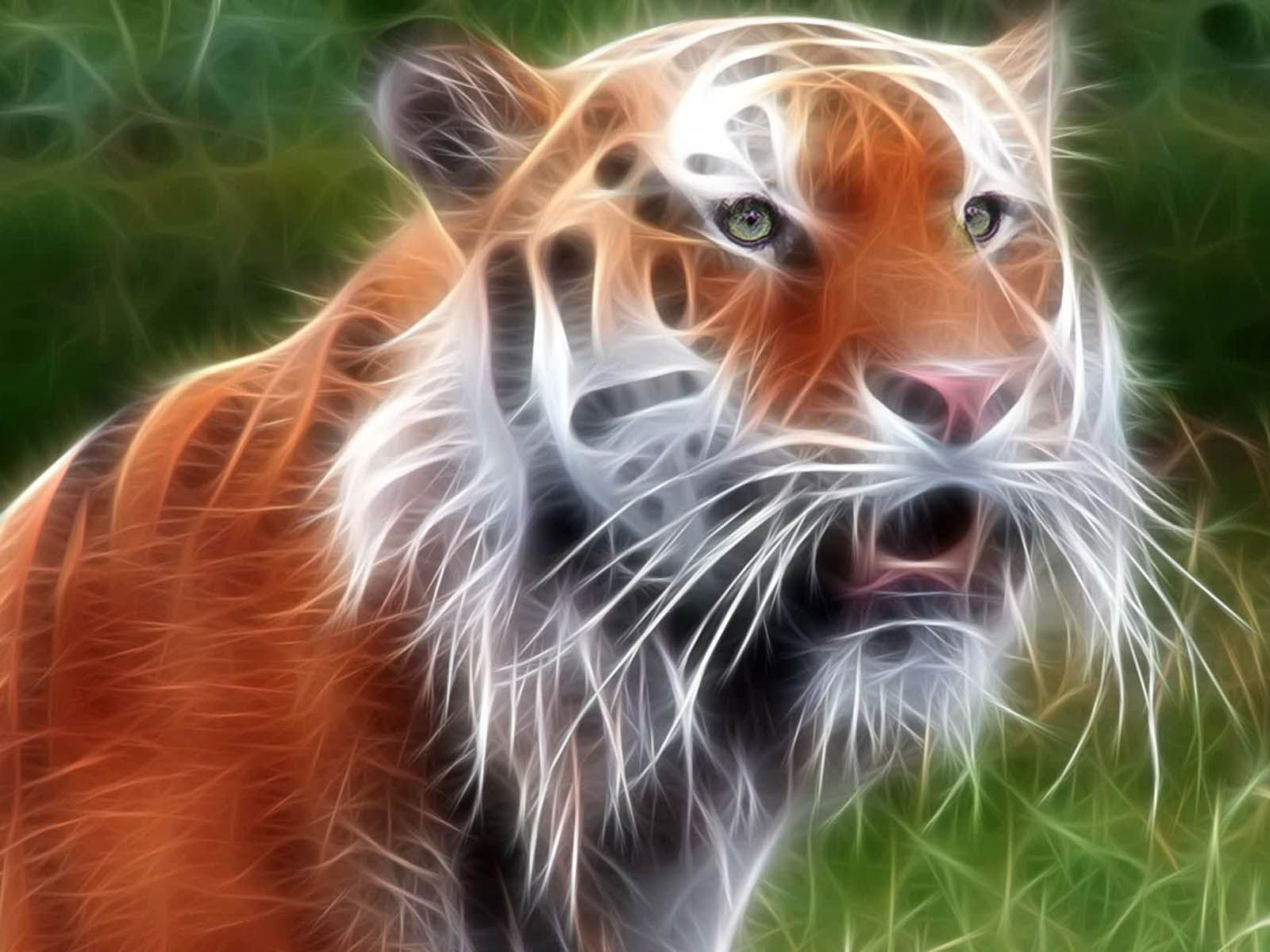tiger wallpapers 3d desktop background | animals wallpapers