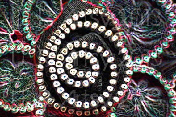 Zipper Flower 1  8x12 Print by URArtsy on Etsy, $10.00