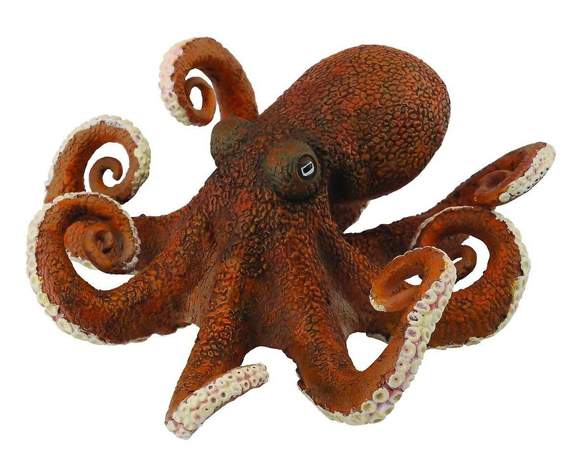 Collecta Octopus Octopus, Octopus pictures, Animals