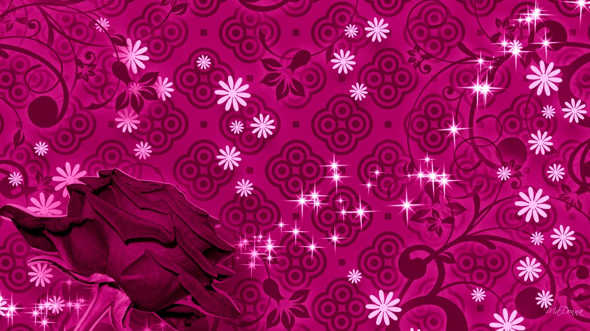 Rose Flowers Wallpapers For Smartphone Of The Year Pink Wallpaper Rose Flower