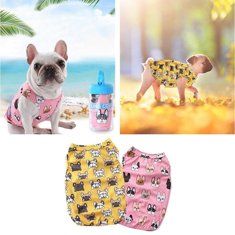 15 Must-Have Accessories for your French Bulldog