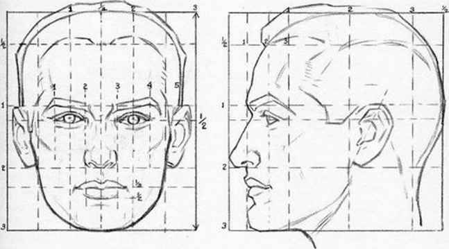 how to draw the head in perspective drawing human head in