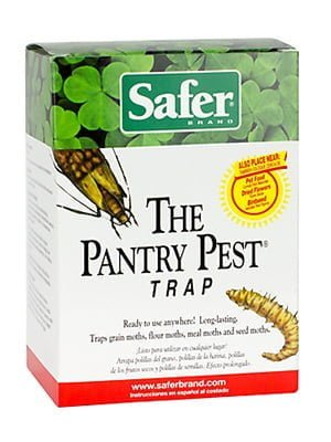 3bb3e968e10e67bfd90d18b20a65c4fa - How To Get Rid Of Pantry Moths And Larvae