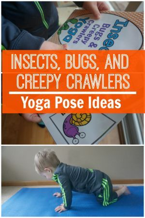 insects bugs and creepy crawlers themed yoga  yoga for