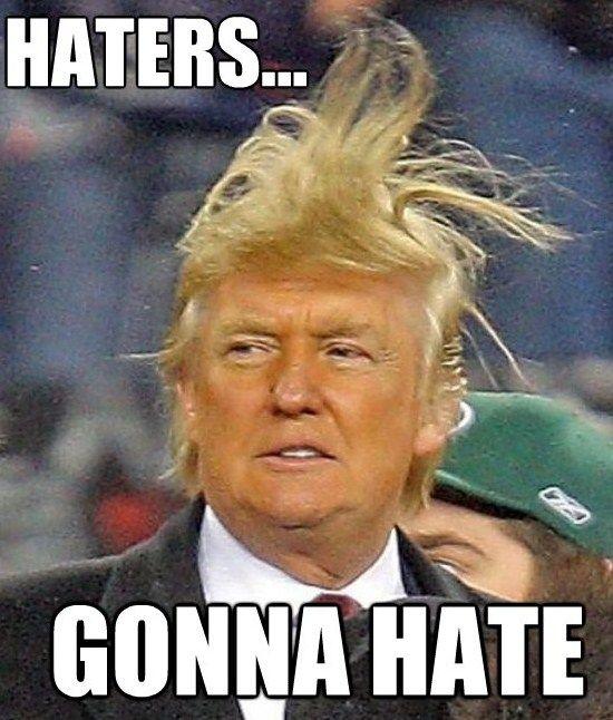 3bb4954d564c260f3337df3ce22b1ef3 5 most hairlarious donald trump memes memes pinterest hair