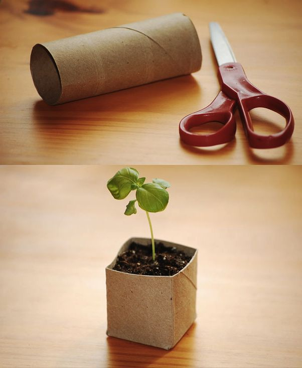 Diy Biodegradable Seed Starter Pots Simple Life Hacks 400 x 300