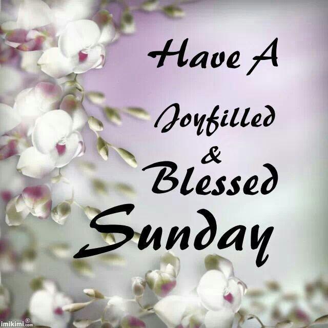 Sunday Quotes Images Fair Happy Sunday  Awesome Pics  Pinterest  Happy Sunday