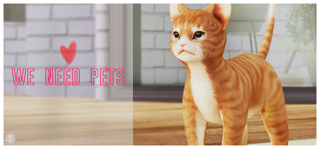 Sims 4 CC's The Best Kitty Deco by Black Sims 4, Sims